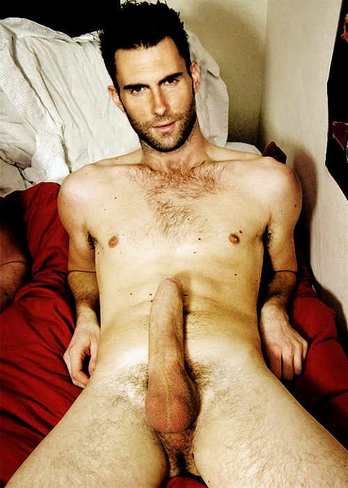 adam levine frontal nude   naked male celebs